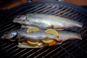 Two trout on the grate. One has lemon and butter on it, and the other is being smoked with just the brine