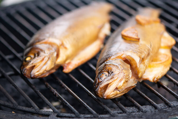 Two trout on the grill grate after an hour on the grill