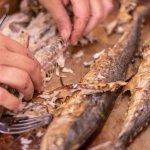 Deboning the mackerel