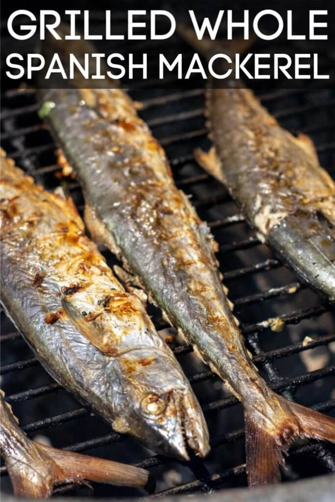 Grilled Whole Spanish Mackerel with a garlic and parsley stuffing is delicious, easy and quick to make. No special skills required here! #mackerel #grill #BGE #BigGreenEgg #GrilledFish #Fish #SpanishMackerel