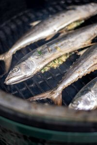 After a light oil, add the whole spanish mackerel to the grill
