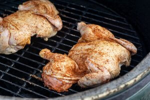 Place the freshly seasoned cornish hens on direct heat on the gill