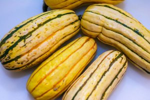 whole delicata squash as you'd find in the supermarket