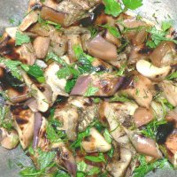 Grilled Eggplant Salad with Herbs