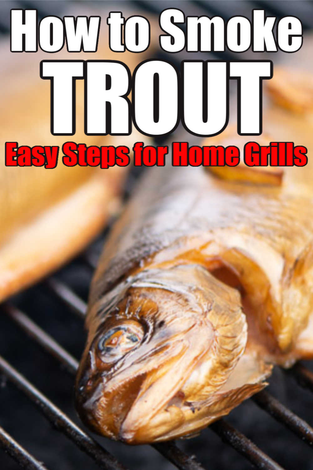 How to Smoke Trout
