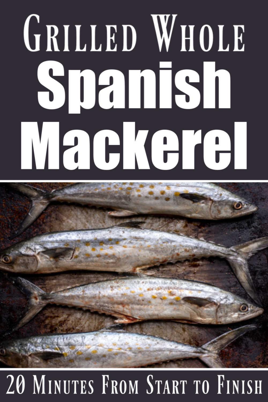 Whole Grilled Spanish Mackerel