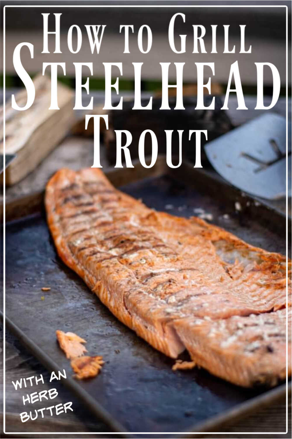 Grilled Steelhead Trout with Herb Butter