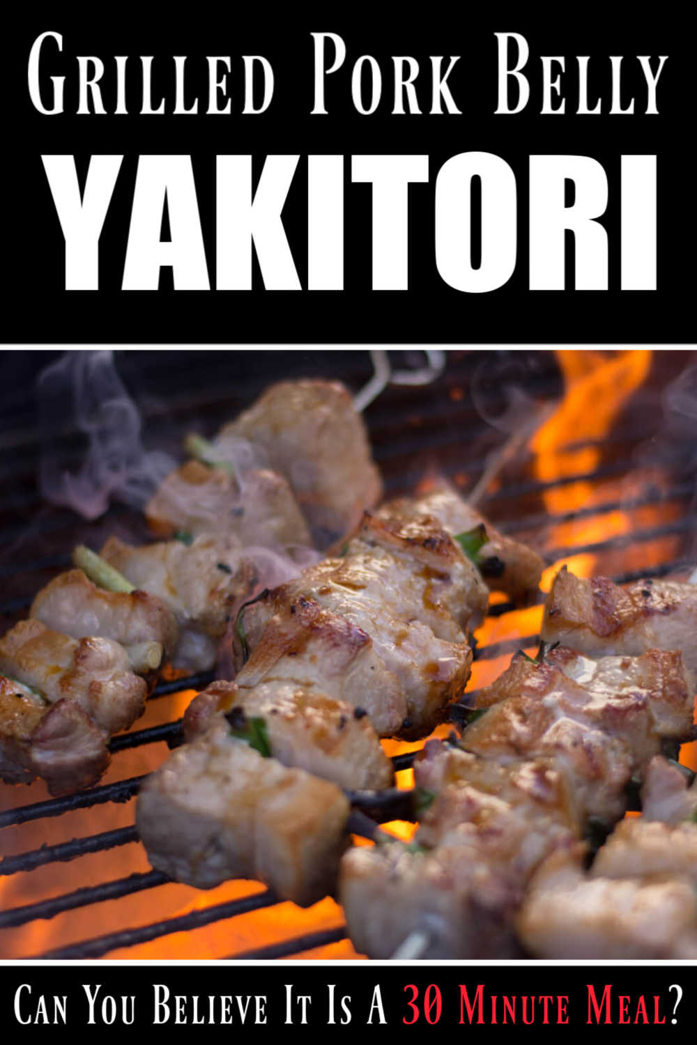Grilled Pork Belly Yakitori