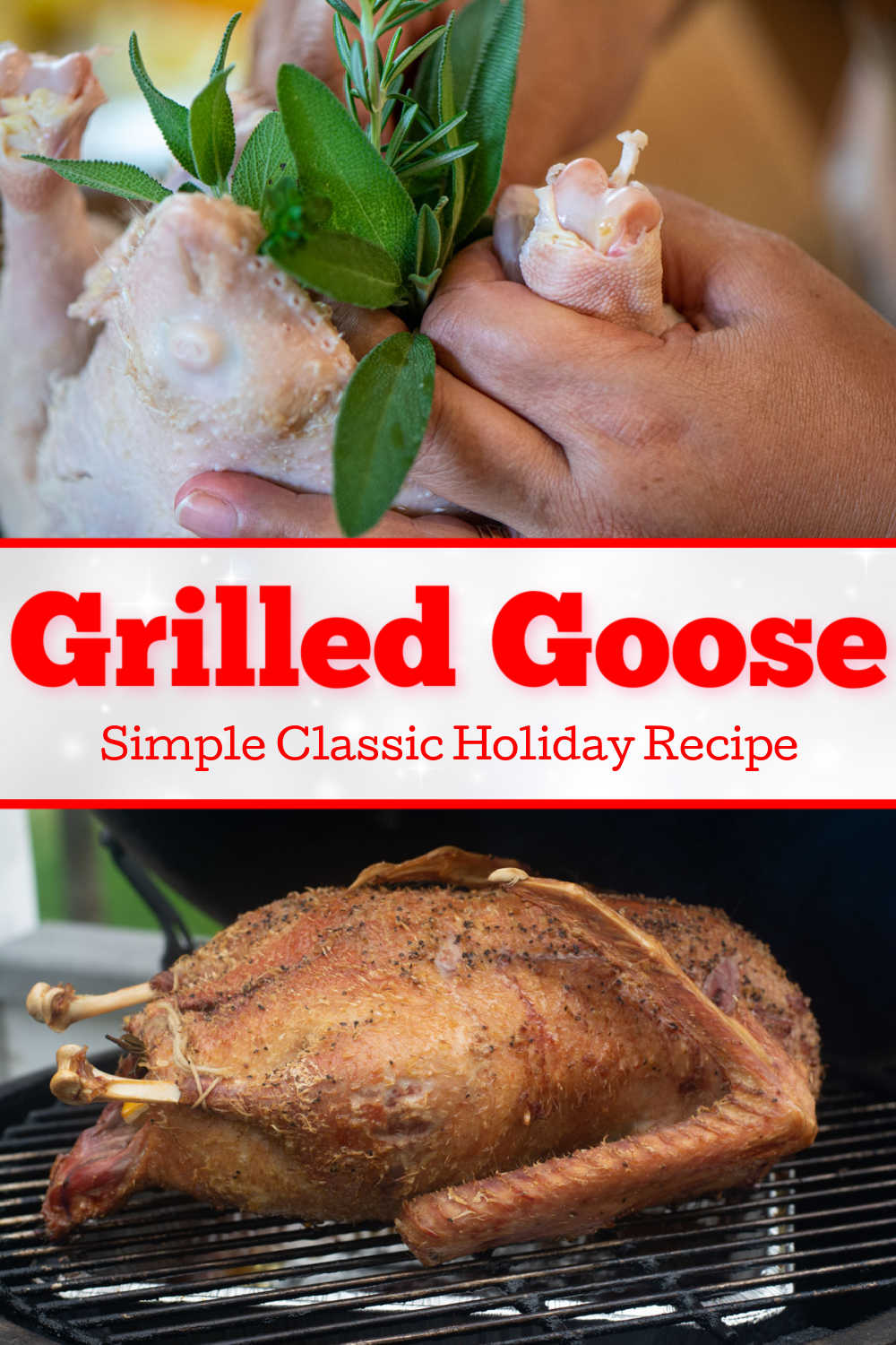 How to Grill a Goose