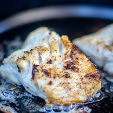 fillet of lingcod on the grill and sizzling in a cast iron griddle.