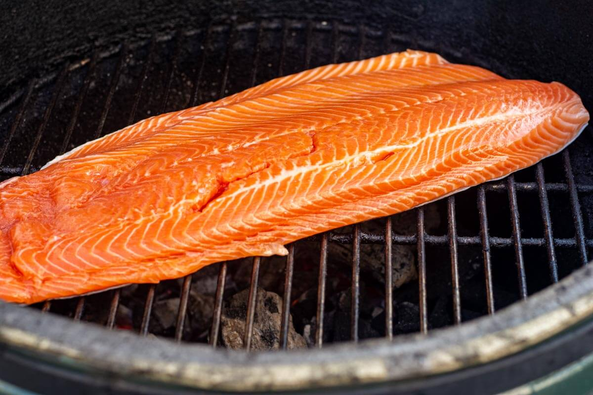 steelhead fillet straight on the grill grate with the skin side down.